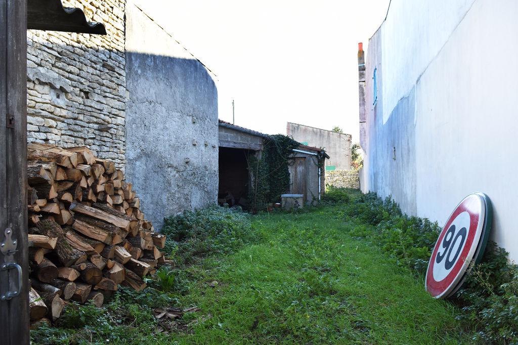 Vieux chai clos de murs - Terrain ARS EN RE (17590)