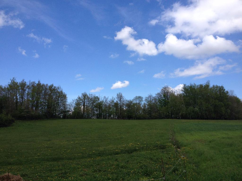 Terrain 11577 m2 Villeneuve-d'Olmes