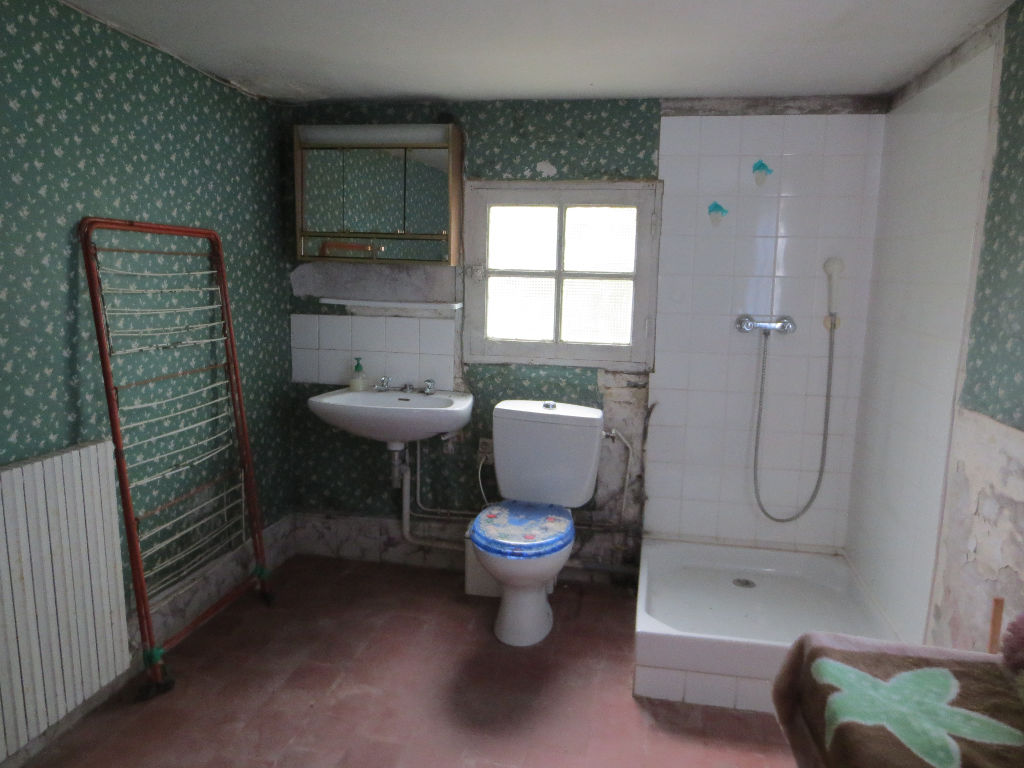 Maison à vendre - Maison à Rénover 47 m² Meusnes.