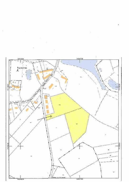Terrain 18126 m² à vendre à LA CHAPELLE MONTMARTIN