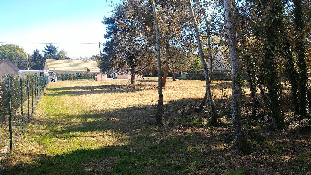 Terrain à vendre - Terrain Chatillon Sur Cher 4510 m2