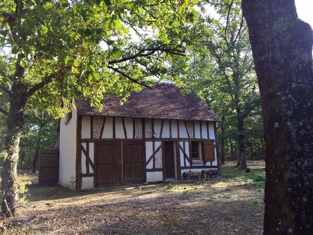 Maison à vendre - Propriété d'agrément dans parc entouré de 10 ha de forêt