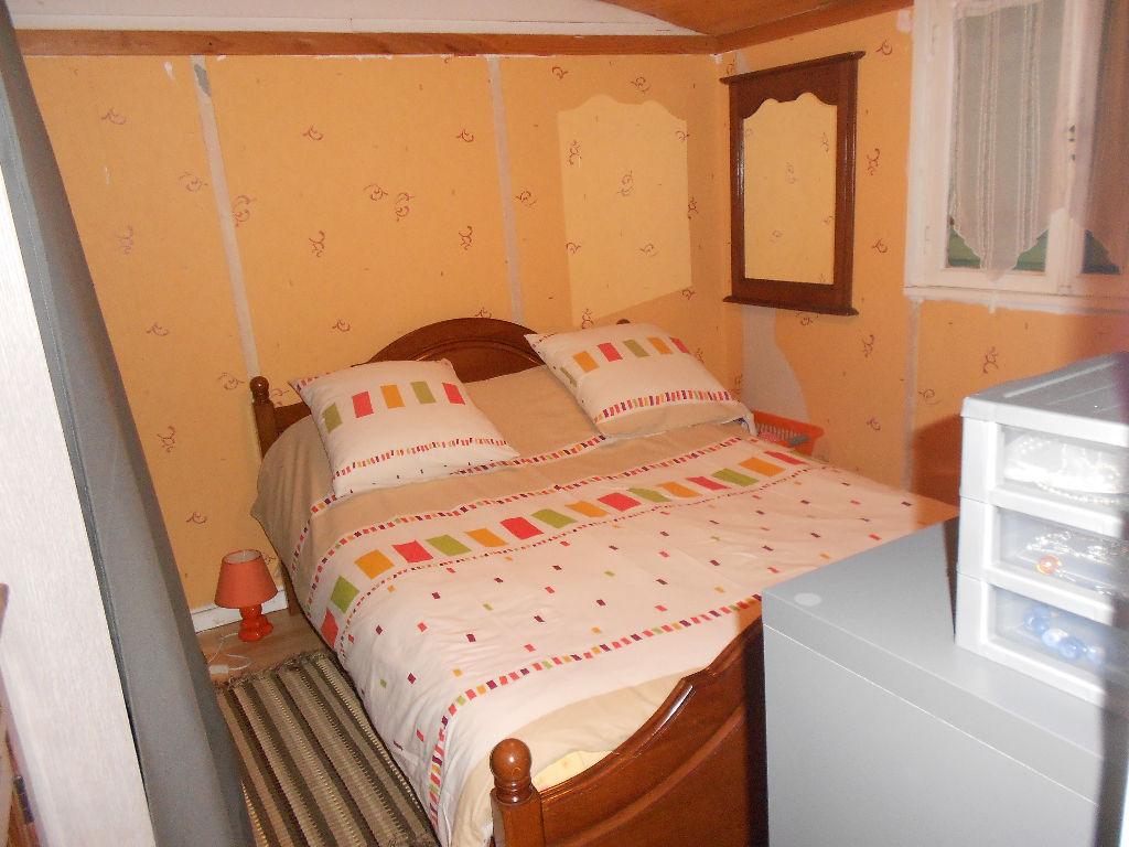 Maison à vendre - Terrain constructible + petite maison Châtillon Sur Cher