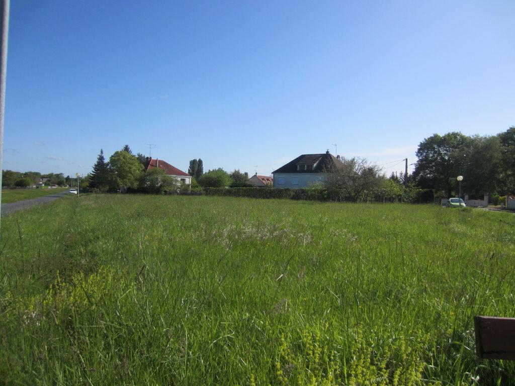 Terrain 1619 m² - CHABRIS