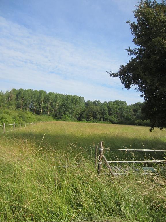 Terrain à vendre - Terrain  2405 m² à La Vernelle