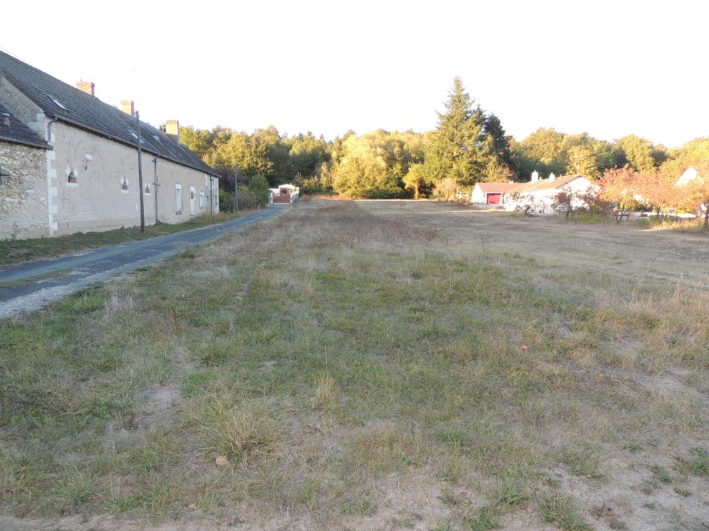 Terrain 1401 m² - SELLES SUR CHER