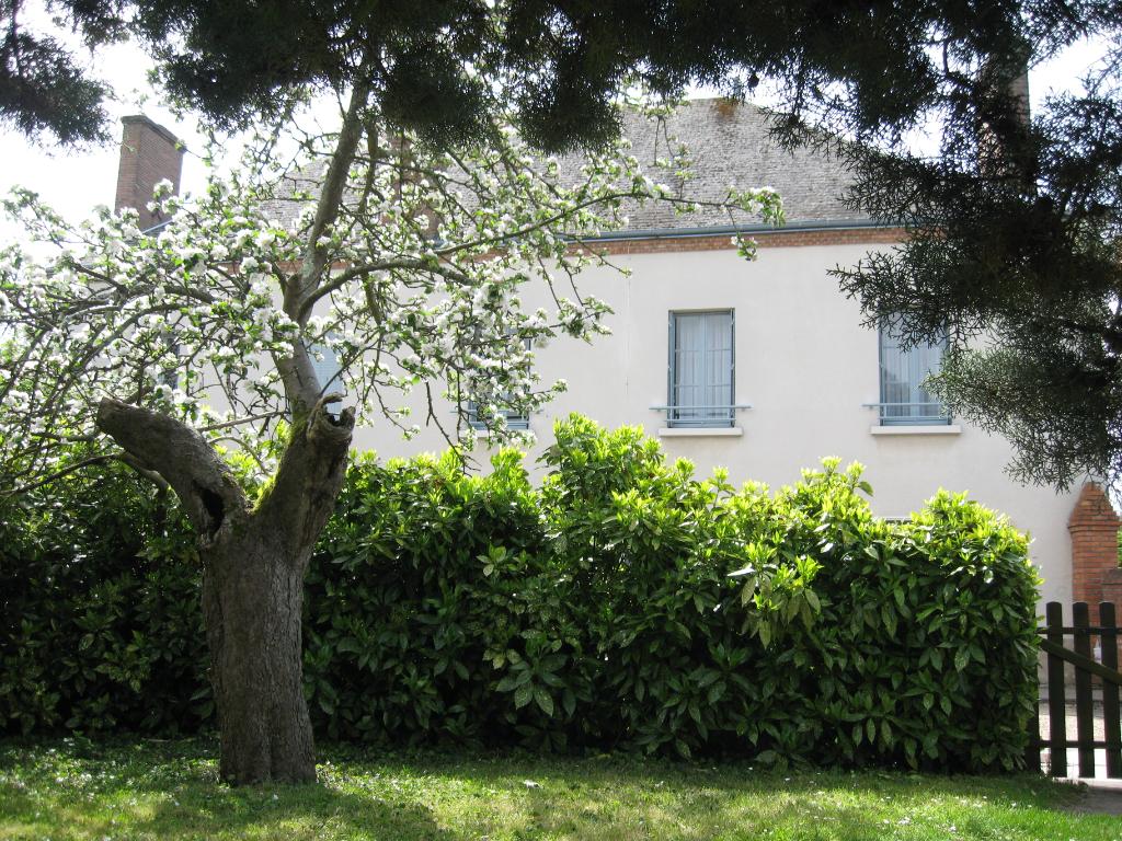 Maison 10 pièces - 6 chambres - LA FERTE IMBAULT