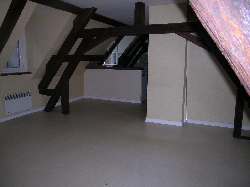 Appartement 3 pièces - 2 chambres - SELLES SUR CHER